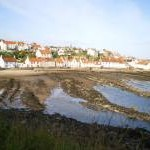 West Pittenweem from the coastal path