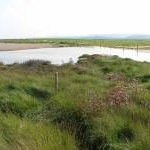 Cley Marshes Nature Reserve