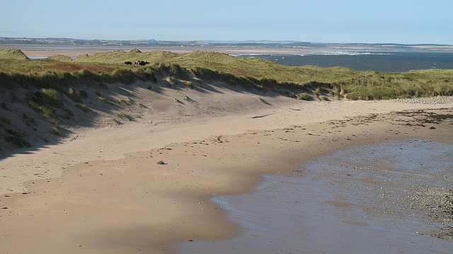 Coves Haven Beach (Holy Island) - Northumberland